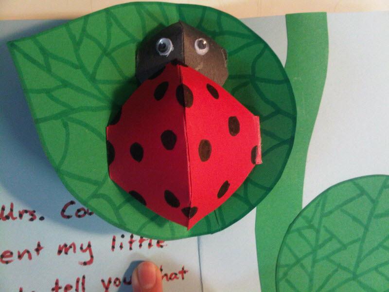 Azuma kids lady bug ladybird play tent and tunnel indoor outdoor.